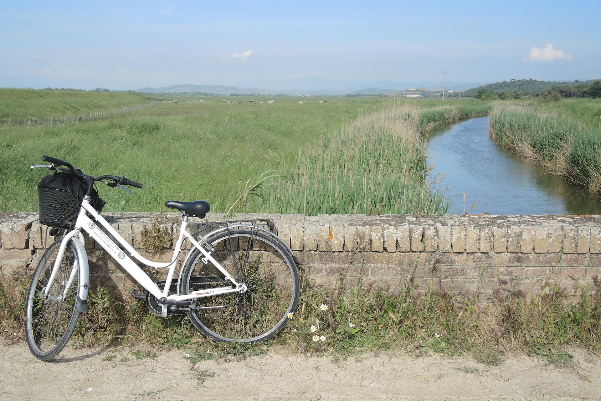 bici al parco uccellina